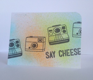Jill dewey hawkins_say cheese