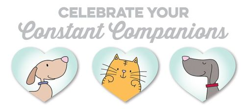 Celebrate Your Constant Companions