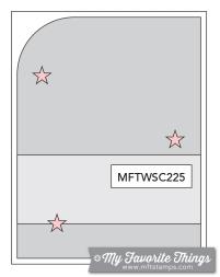 MFT_WSC_225