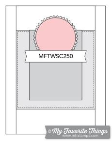 MFT_WSC_250