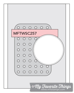 MFT_WSC_257